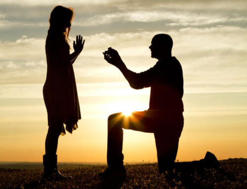 We have a proposal for you!
