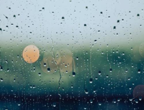 Rainy Day Activities in Kerry